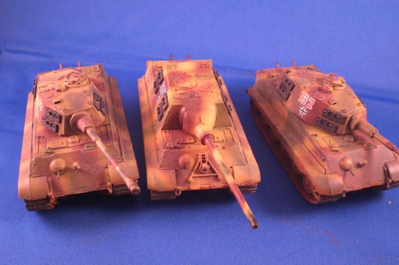 Es ist kein Mensch, es ist kein Tier. Es ist ein deutscher Panzergrenadier!  Cimg4717