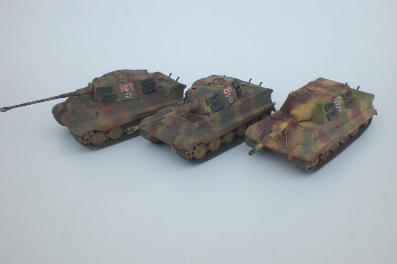 Es ist kein Mensch, es ist kein Tier. Es ist ein deutscher Panzergrenadier!  Cimg4719