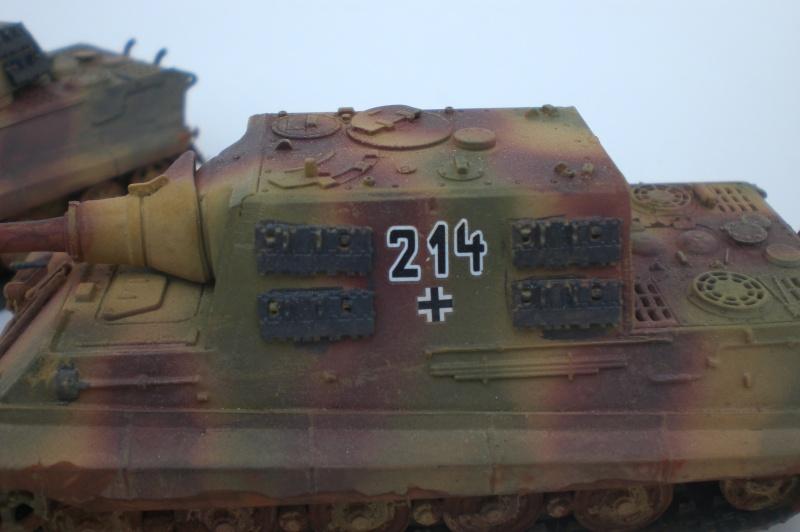 Es ist kein Mensch, es ist kein Tier. Es ist ein deutscher Panzergrenadier!  Cimg4720