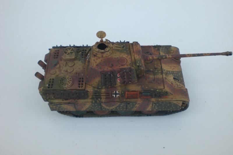 Es ist kein Mensch, es ist kein Tier. Es ist ein deutscher Panzergrenadier!  Cimg4732