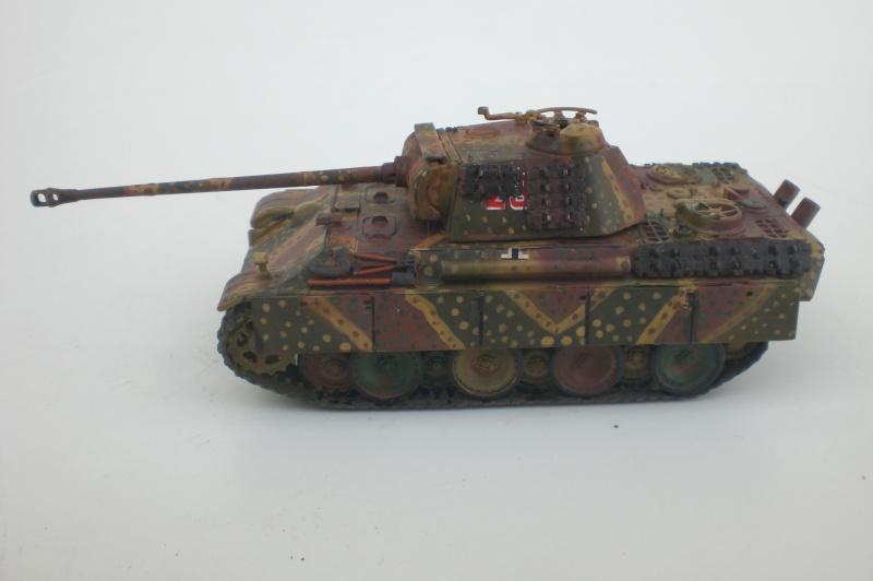 Es ist kein Mensch, es ist kein Tier. Es ist ein deutscher Panzergrenadier!  Cimg4734