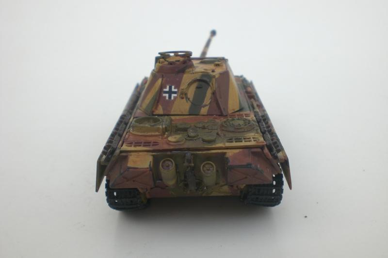 Es ist kein Mensch, es ist kein Tier. Es ist ein deutscher Panzergrenadier!  Cimg4811