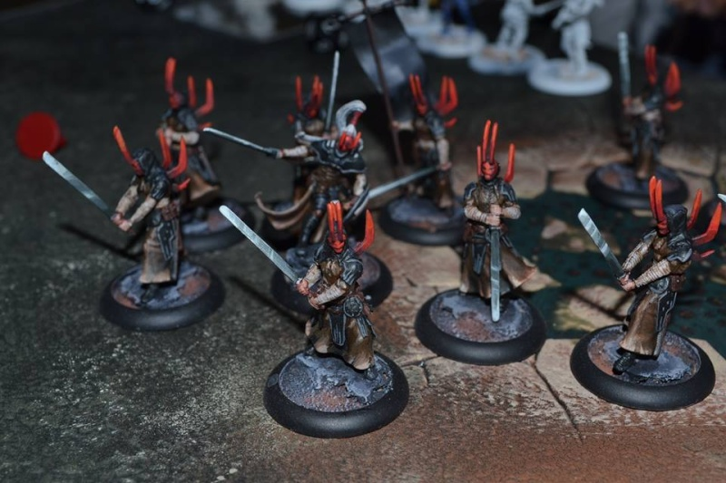 Armées Wrath of Kings 11020210