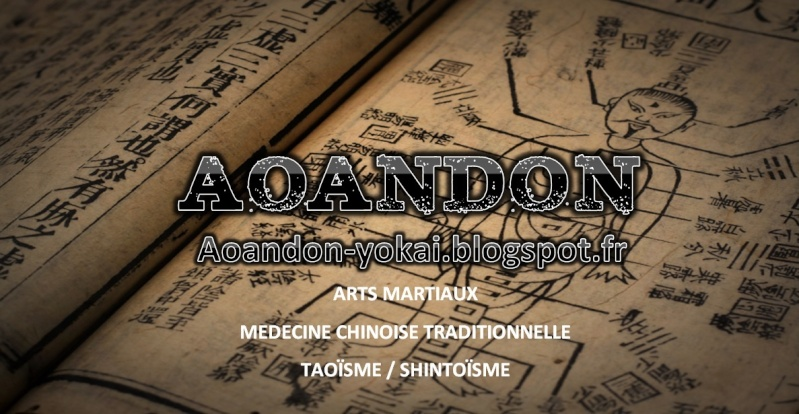 [Blog arts martiaux] Aoandon  Couv_f10