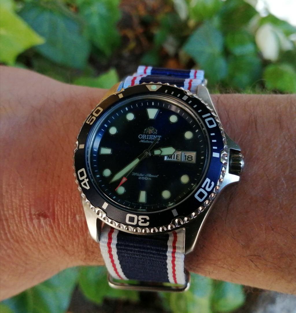 Revue Orient diver Ray Raven II  Img_2060