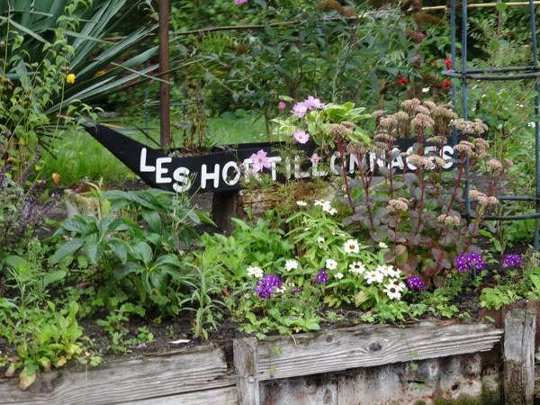 hortillonnages d'Amiens Hortil10