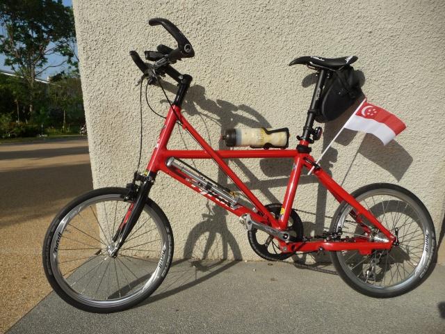 Super vélos pliables - Page 4 P1230510