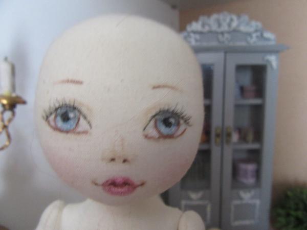 Chiffonnette, joli visage  mais laid corps. Img_1726