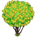 Vous cherchez un arbre ? Venez cliquer ici !!! Almond12