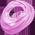 Habitat Flamant Rose => Plume de Flamant Rose Flamin10