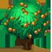 Vous cherchez un arbre ? Venez cliquer ici !!! Longan13