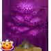 Vous cherchez un arbre ? Venez cliquer ici !!! Redbee13