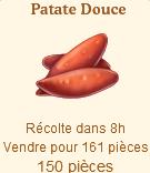 Patate Douce Sans_358