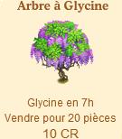 Arbre à Glycine => Glycine Sans_544