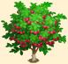 Vous cherchez un arbre ? Venez cliquer ici !!! Sans_573
