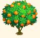 Vous cherchez un arbre ? Venez cliquer ici !!! Sans_574