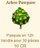 Arbre Pawpaw => Pawpaw Sans_t75