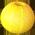 Ruche à bulles Yellow11