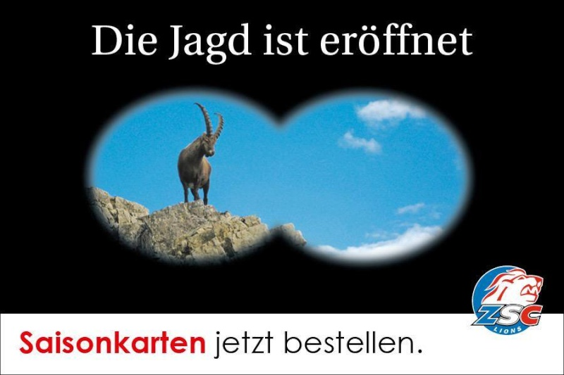 Zürcher SC Lions - Page 2 11866310