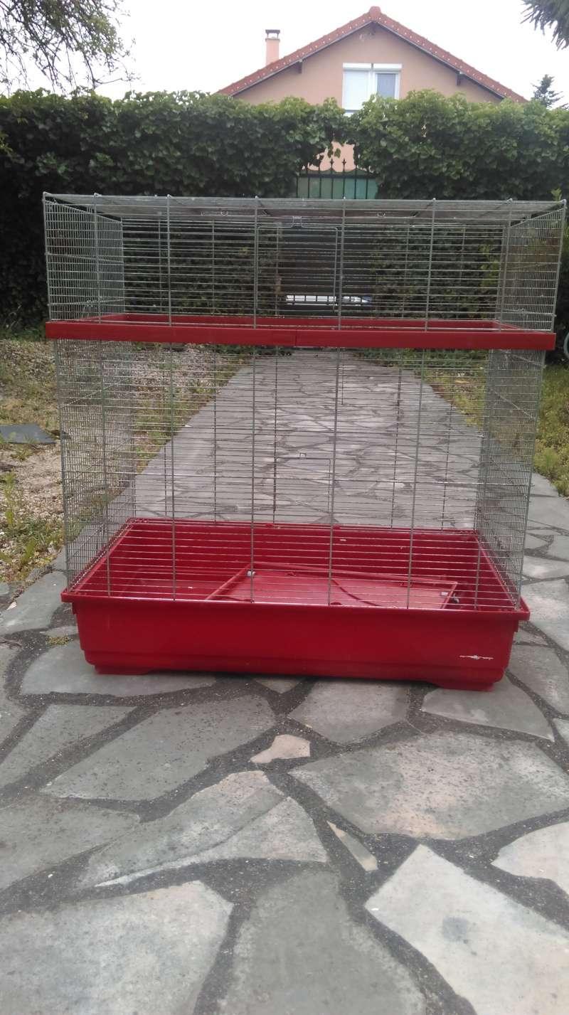 Donne grande cage RP Imag0010
