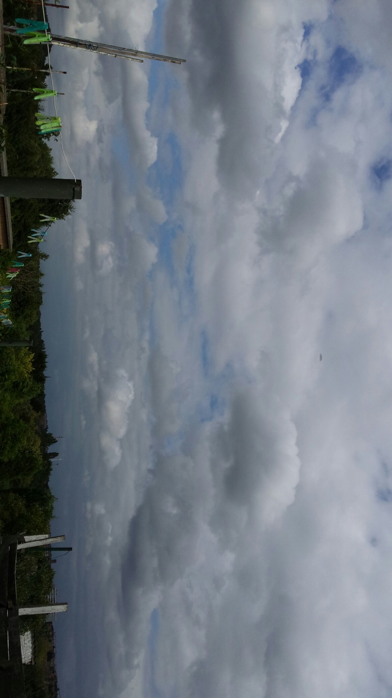 2015: le 04/08 à Environ 14h30 - Une soucoupe volante -  Ovnis à Belgique, Gilly -  - Page 2 210