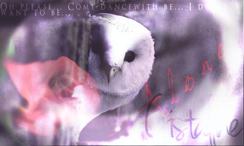 Kirito, le blanc dans les ténèbres. Cricri10