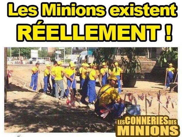 Jeux de Minions  Minion10