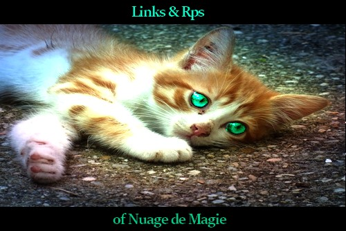 Link's & Rp for MagicPaw 12310