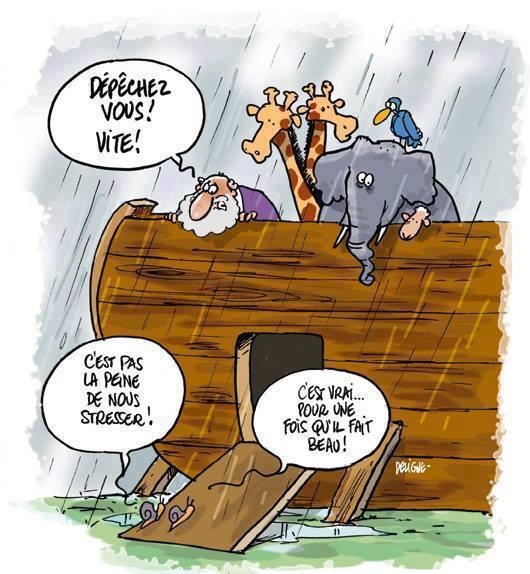 Misères de Noé - Page 4 11209310