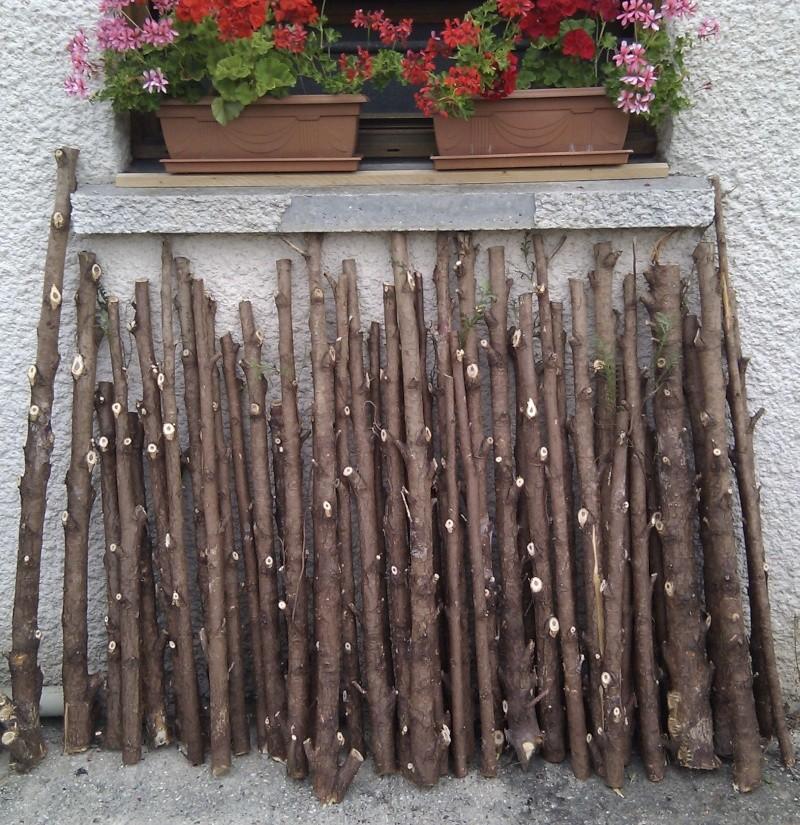 Question aux boiseux, tourneurs de bois, et autres bidouilleurs de génie du bois Img_2011