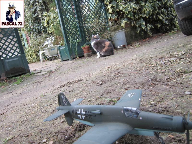 Dornier 335 A PFEIL de Tamiya au 1/48 par Pascal 72 4_114