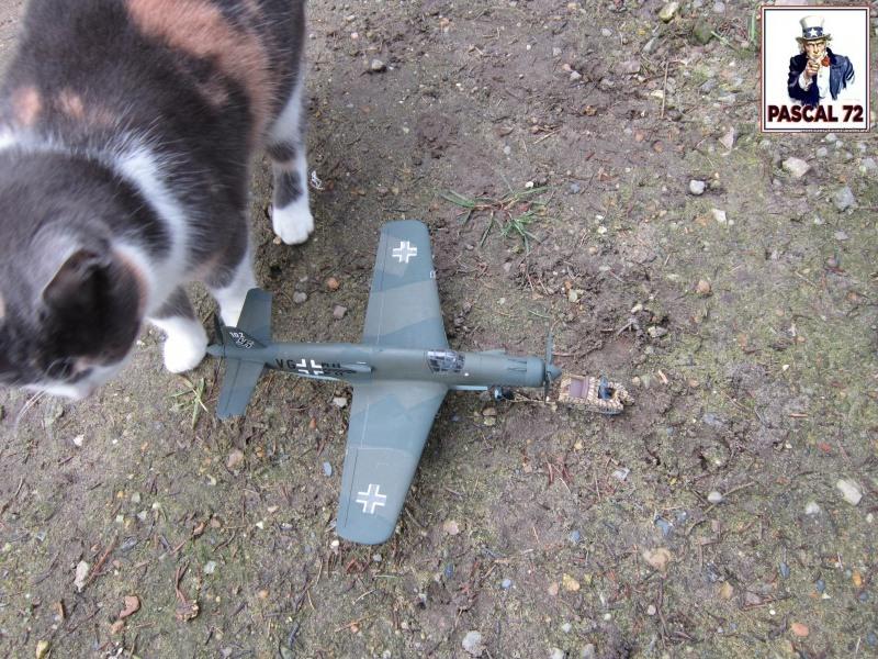 Dornier 335 A PFEIL de Tamiya au 1/48 par Pascal 72 6_114
