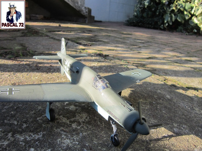 Dornier 335 A PFEIL de Tamiya au 1/48 par Pascal 72 Img_4011