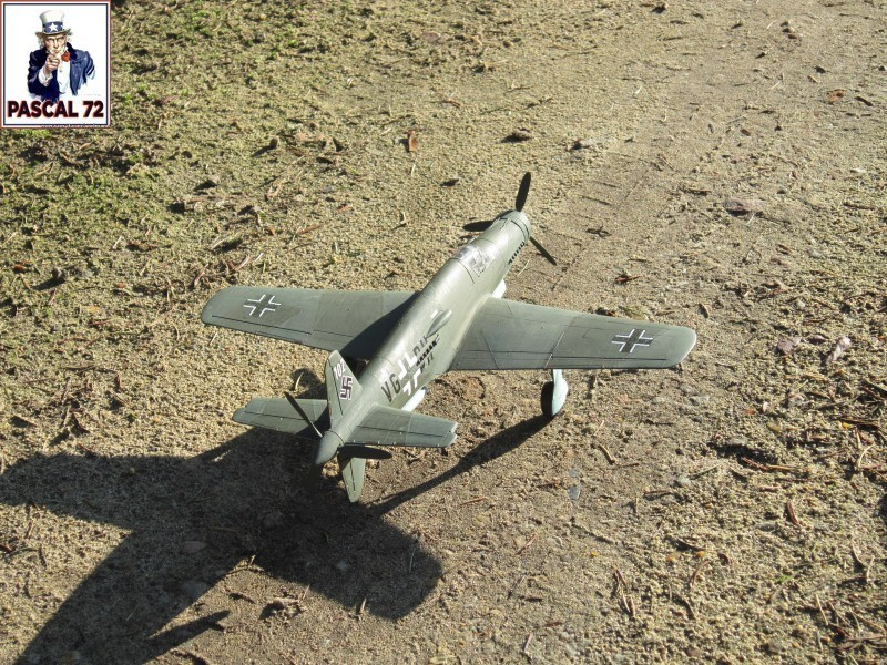 Dornier 335 A PFEIL de Tamiya au 1/48 par Pascal 72 Img_4115
