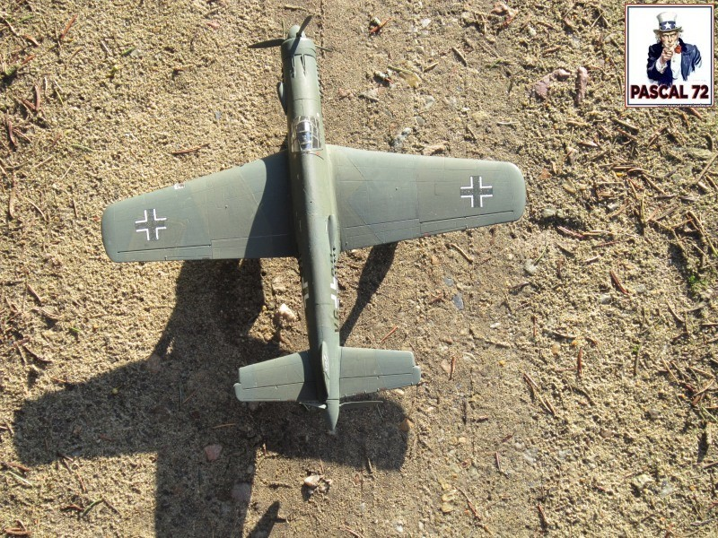 Dornier 335 A PFEIL de Tamiya au 1/48 par Pascal 72 Img_4117