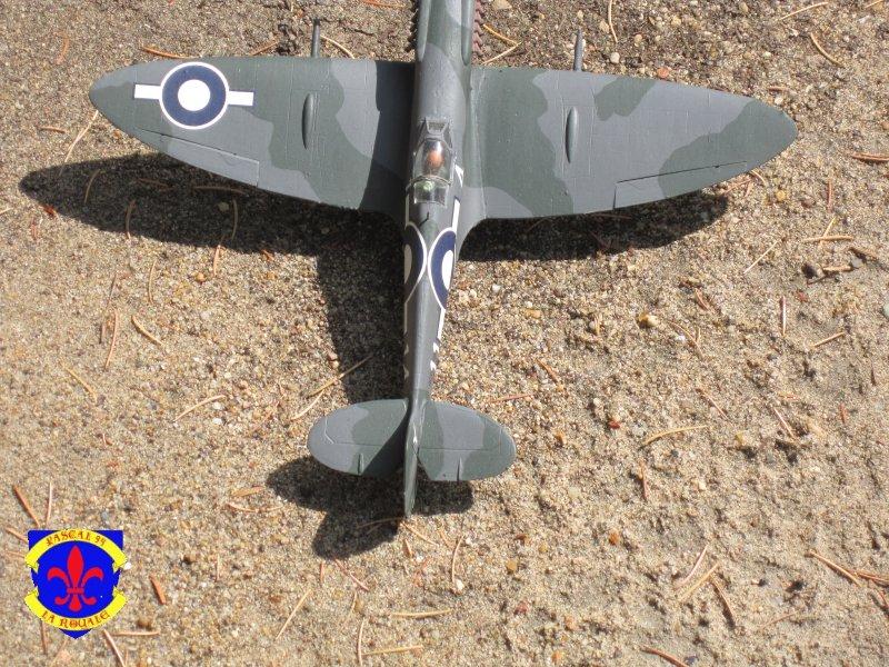 Supermarine Seafire F MK. XV de Revell au 1/48° Img_5151