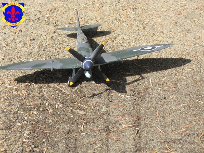 Supermarine Seafire F MK. XV de Revell au 1/48° Img_5153