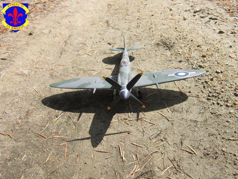 Supermarine Seafire F MK. XV de Revell au 1/48° Img_5166