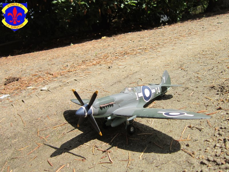 Supermarine Seafire F MK. XV de Revell au 1/48° Img_5168