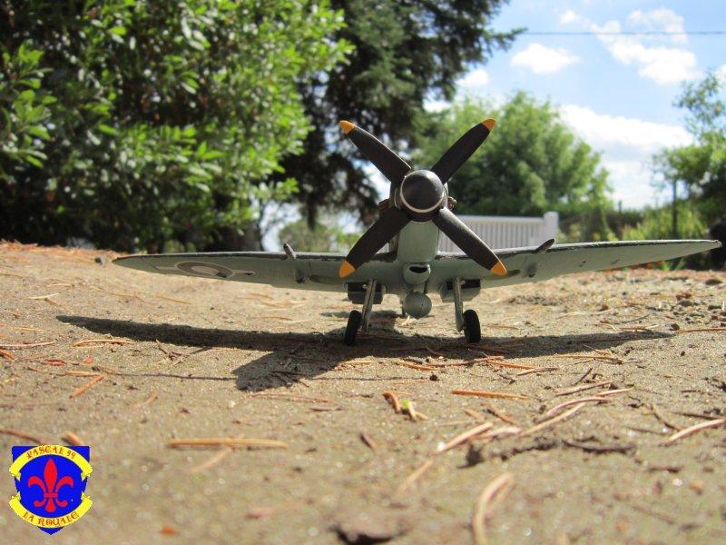 Supermarine Seafire F MK. XV de Revell au 1/48° Img_5169
