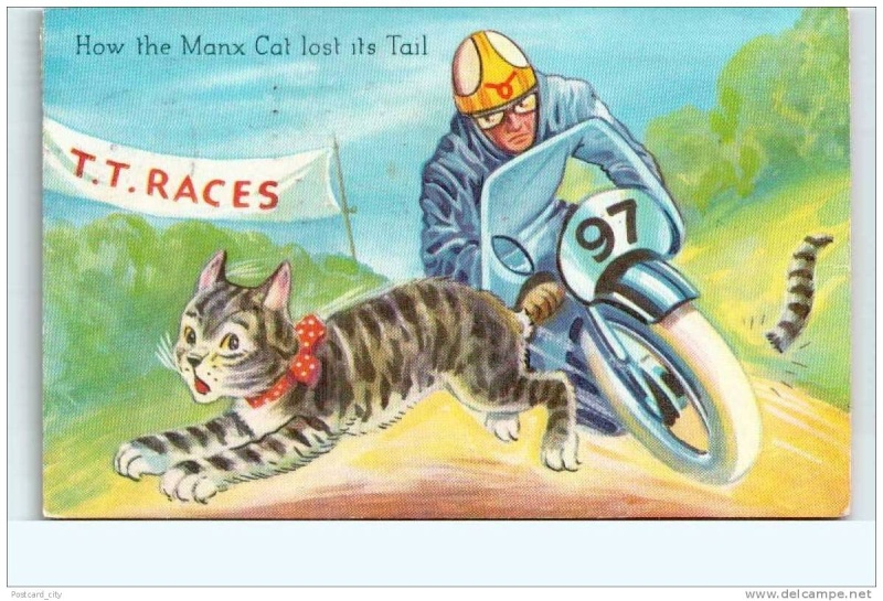 [Road Racing] TT 2015 - Page 4 Cats_i10