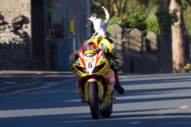 [Road Racing] TT 2015 - Page 4 Hutchy10