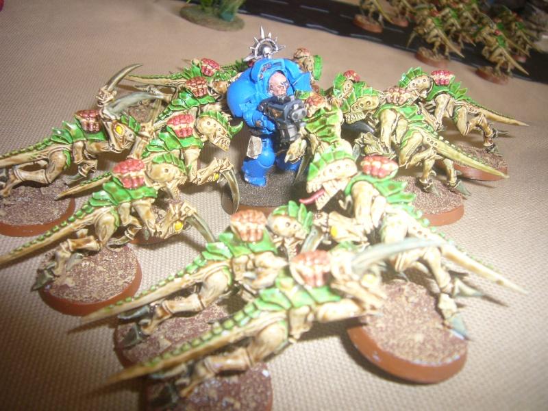 bataille de GALENUS PRIME : alliance TAU/SPACE MARINE contre tyranides. P1420312