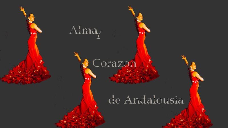 La Rose hispanique Flamen10