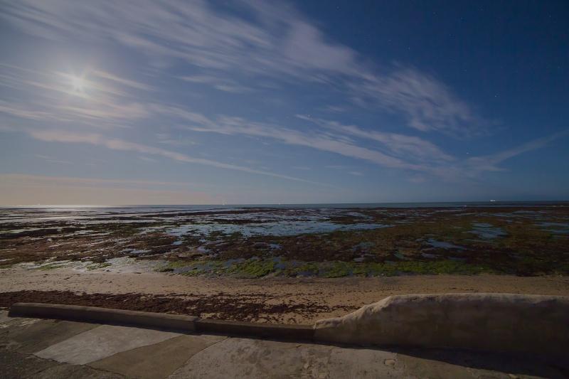 Soirée observation à l'Île de Ré Img_4718