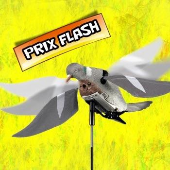 Hypaflap ou pigeon a aile battante électrique ? Image13