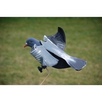 Hypaflap ou pigeon a aile battante électrique ? Image14