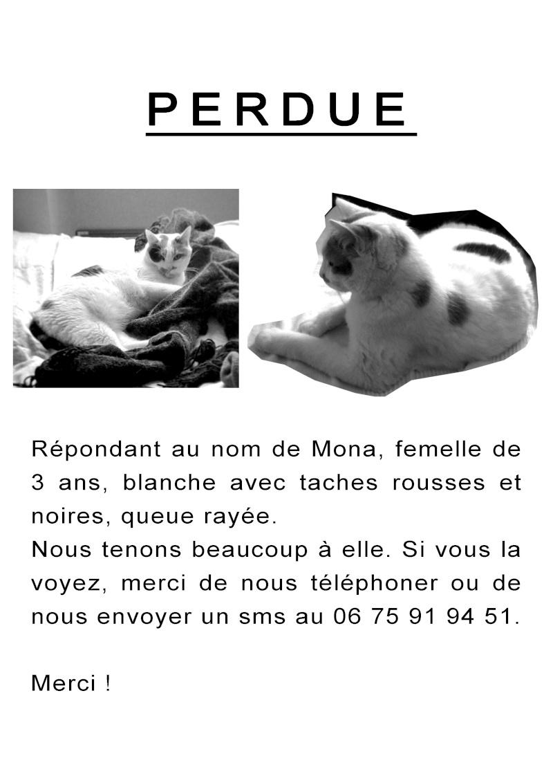 Mona, perdue à Angoulême Mona10