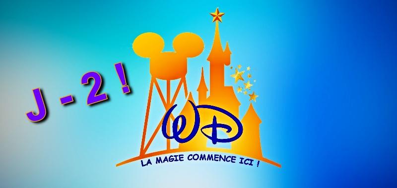Wonderful Disneyland 110