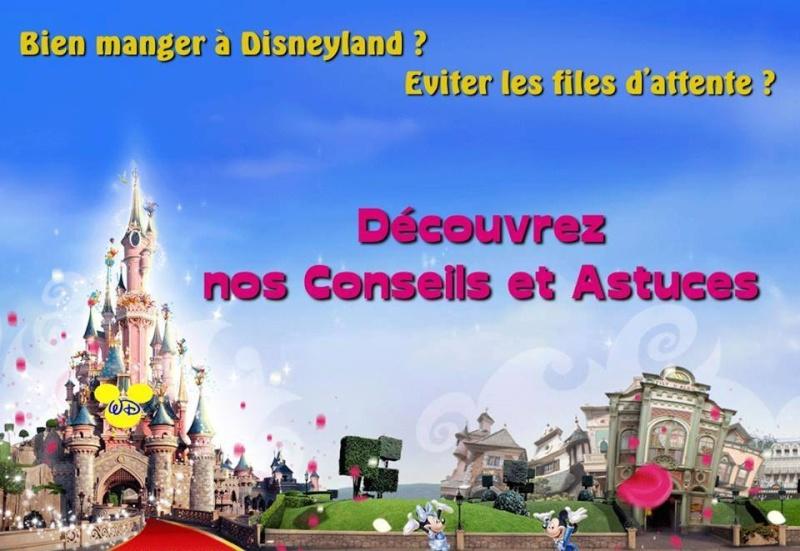 Wonderful Disneyland 11880610